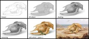 Sheep`s skull process
