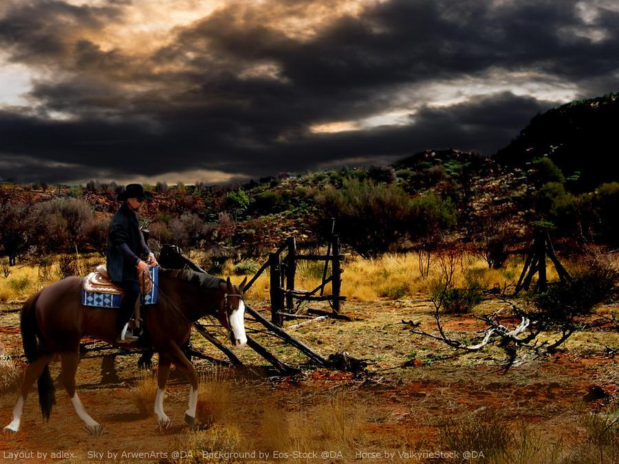 Western Horse Layout by adlex on DeviantArt