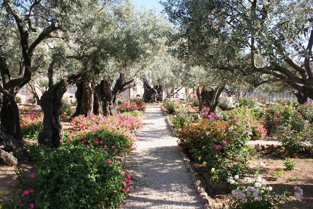The Garden Of Gethsemane By Iluvrocket ...