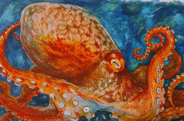 Airport Octopus by Octobertiger