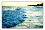 - wave  -