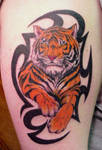 Tiger with Tribal