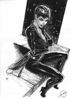 catwoman comish by nebezial