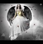 When Angel's Fall