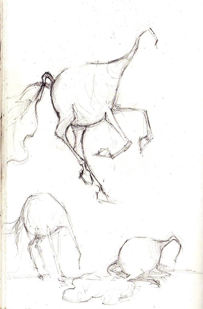 Horse-radish-sketches by whiteflyinglizard