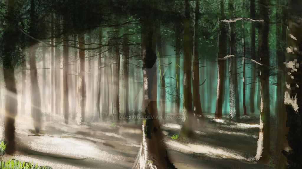 Sun lit forest by dubski123