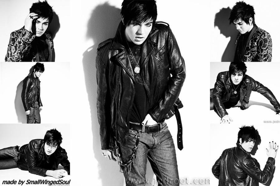 Adam Lambert 2013 Wallpaper Adam Lambert Wallpaper 8 by