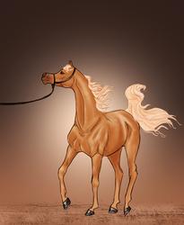 Egyptian halter by SagaNight