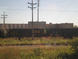 Coal Cars on Siding by steward