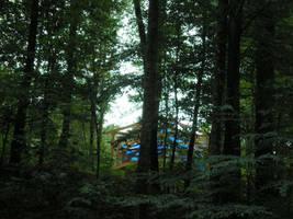 Pavilion Through Trees by steward