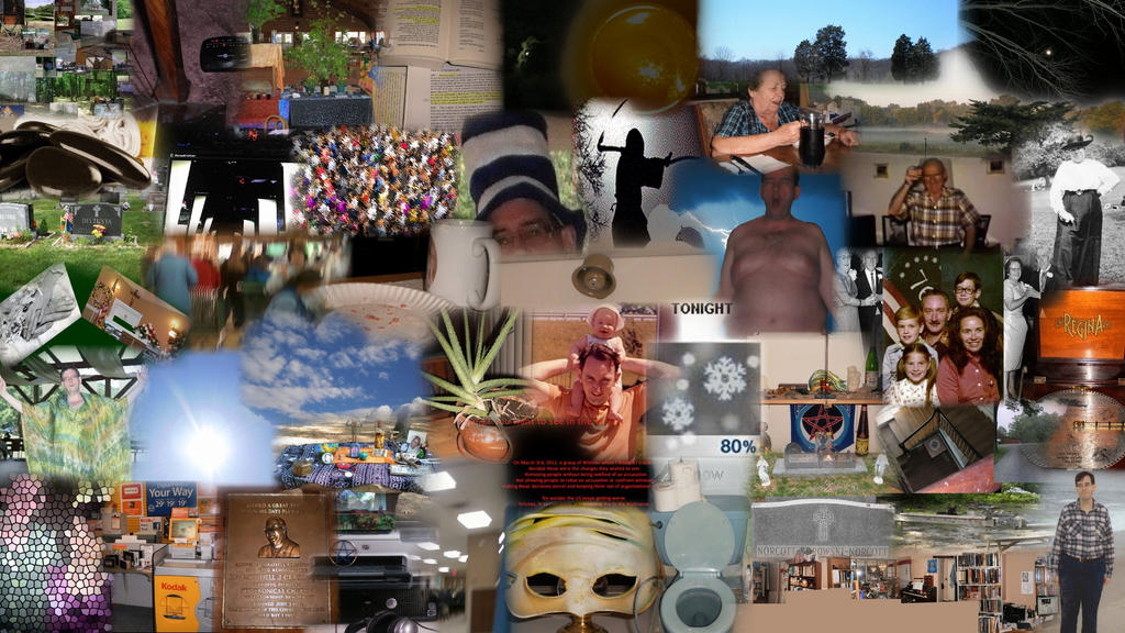 Collage of the project by steward