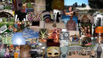 Collage of the project