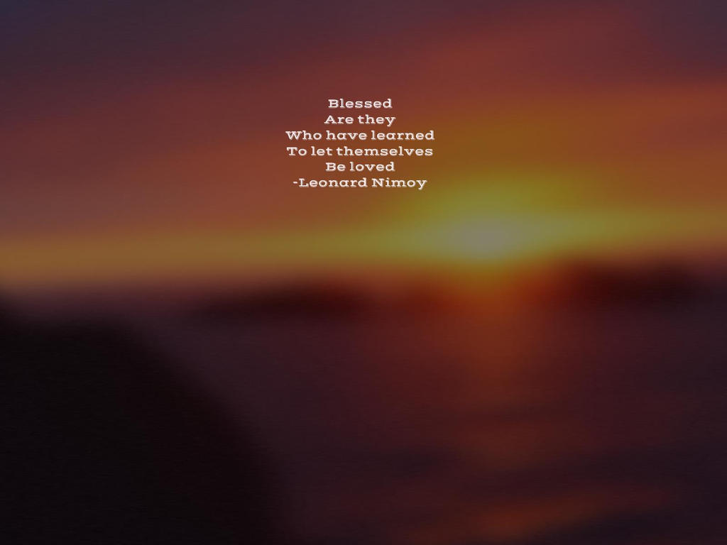Allow Love by steward