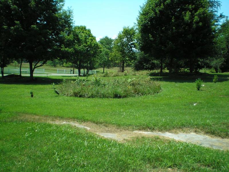 SHWC2006: Wild Gardens by steward