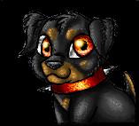 Puppy Drein Icon by kot-k
