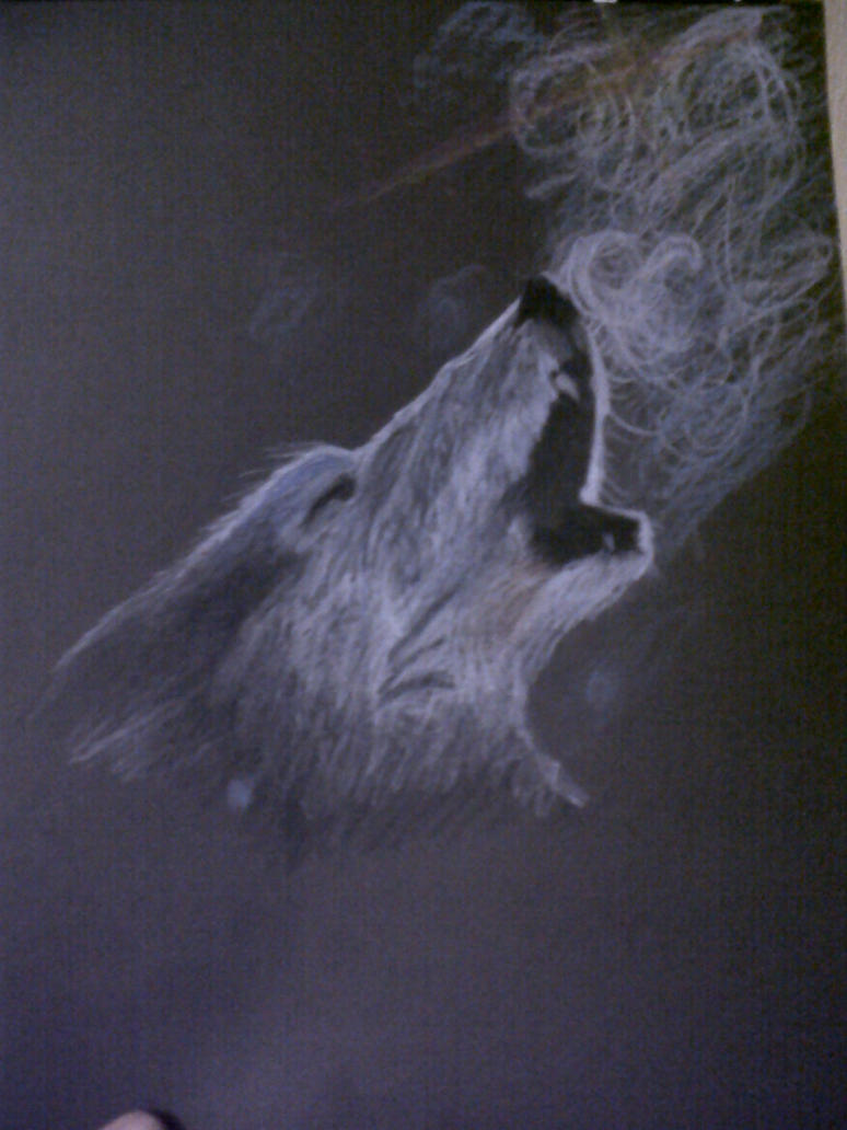 Black Wolf Howling Drawing Howling Wolf White-on-black