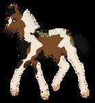 N674 Padro Foal Design for Louisa2022