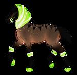 N6157 Padro Foal Design for WildOracle