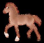 N6087 Padro Foal Design for WildOracle