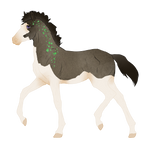 N6609 Padro Foal Design for renasma6890