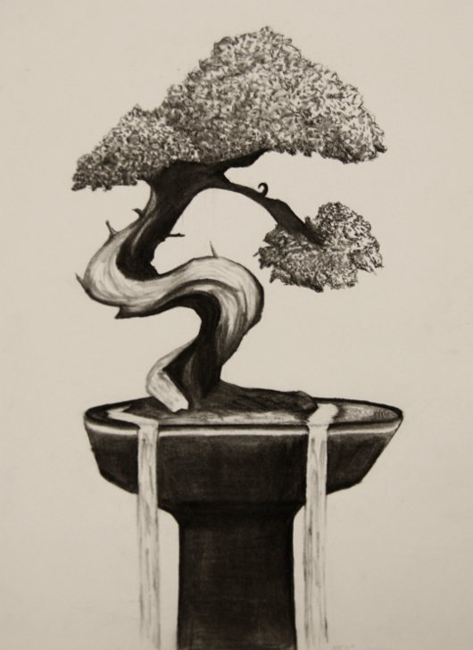 Bonsai Tree by LinzMW