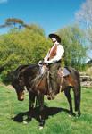 Cowboys 17