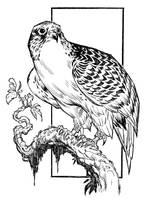 Sketchbook-new3 by johnsonverse