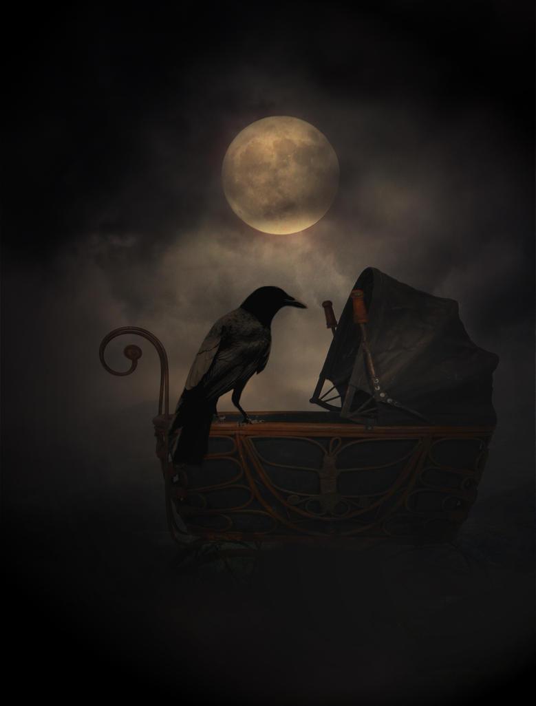 Crow by dark--shepherd on DeviantArt