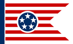 Post-Apocalyptic Tennessee Flag