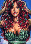 Poison Ivy Sketch Card from DC's Women of Legend