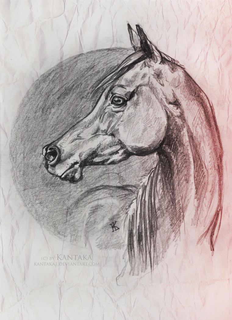 Arabian sketch 2 by Kantaka1