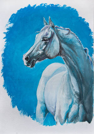 White and blue by Kantaka1