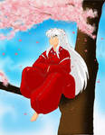 InuYasha in Sakura Tree