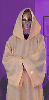yellow robe with hood