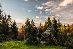 Mont Beuvray by dc58