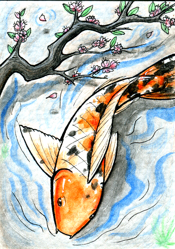 For sale aceo don 39 t play koi by kaizokushojo on for Koi prints for sale