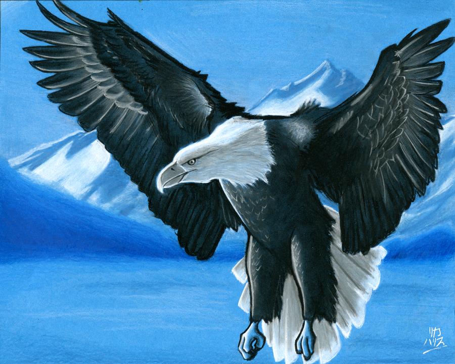 Eagle for Dad by KaizokuShojo