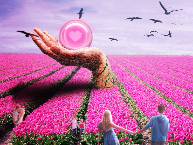 Let's go to the Field of Love by xxLiLLiE