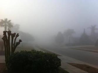 Mist by iNeedDosh