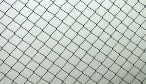 Chain Link Fence -1