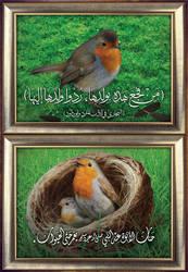 Prophet Muhammad's Kindness to Animals - AR