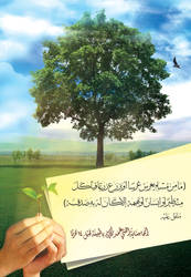 Sowing seeds and planting trees - AR