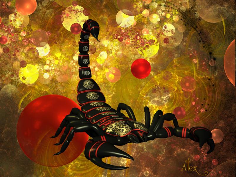 --Scorpian-- by TantalizedSpirit