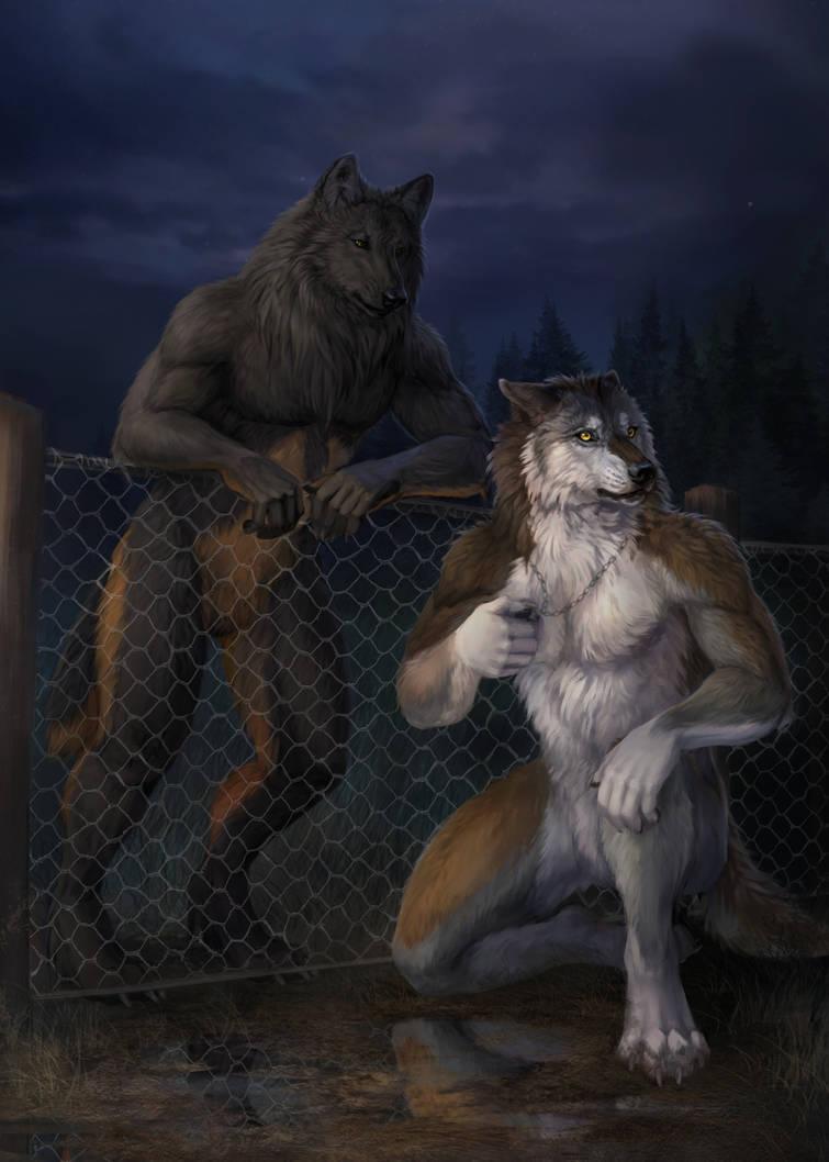 Werewolf Tale II - Cover