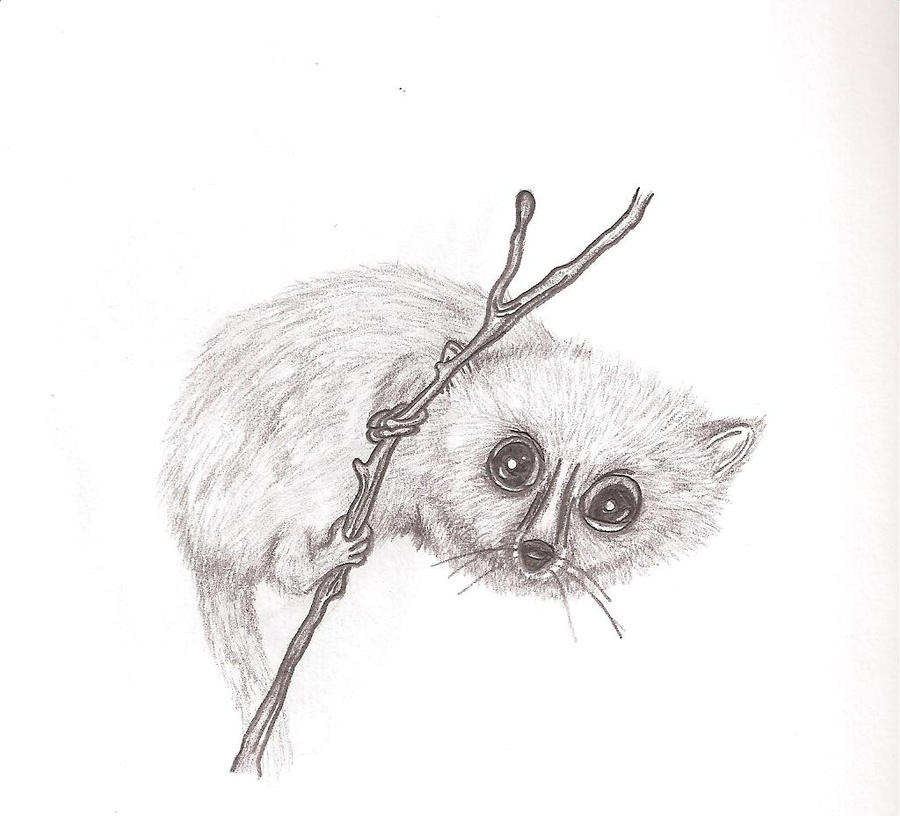 Grey Mouse Lemur by Winds-of-Fire on DeviantArt