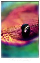 Photo - Sitting on a Rainbow by tigaer