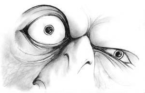 +Crazy parrot+ by radamenes