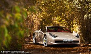 Italian Forest by GTMQ8