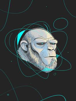 Ape Introspection