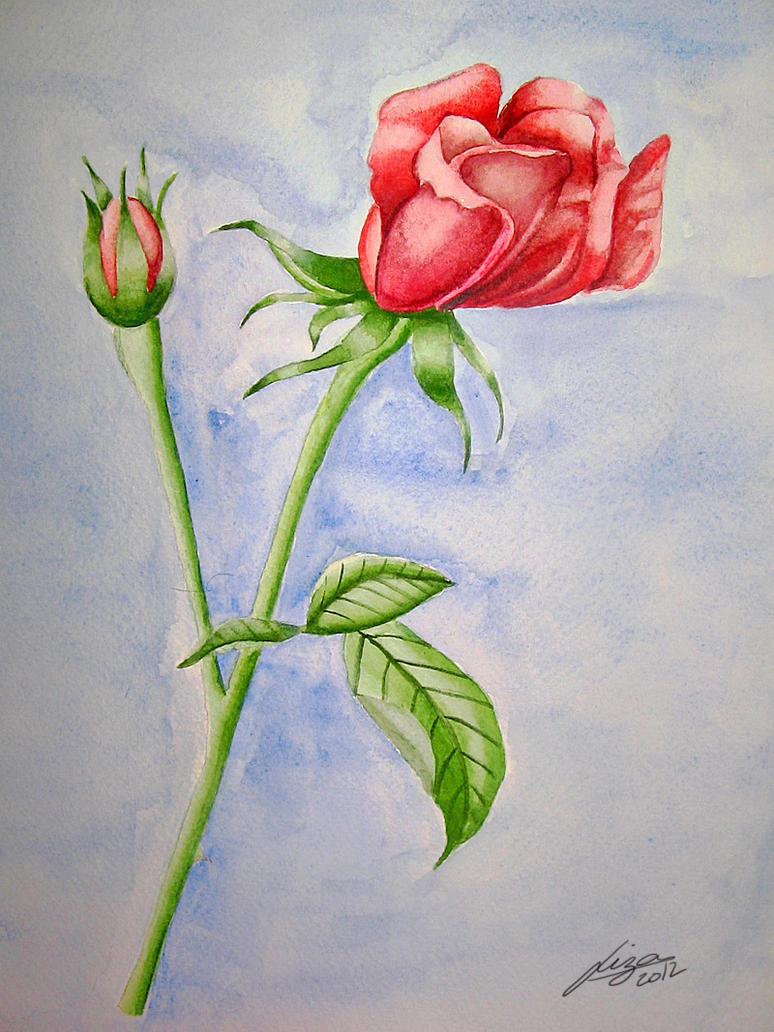 Rose by LigoGren